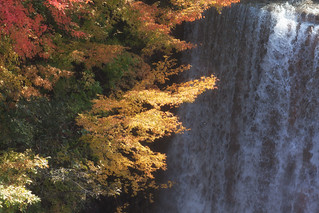 Fall by the Falls