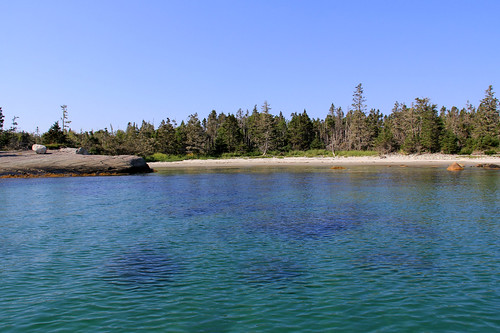 trees sky canada beach nature water landscape rocks day novascotia clear atlanticocean murphycove