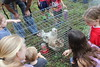 4-H Petting Zoo at the Southeast Library