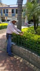 El Compa Pato es el hombre del millón de plantas
