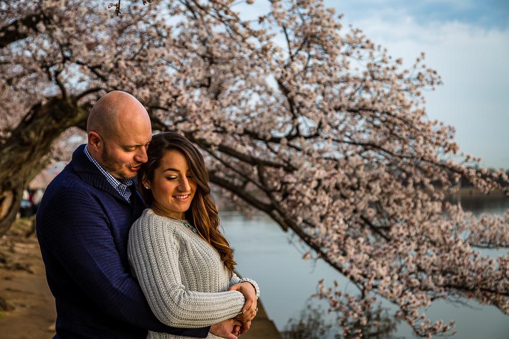 2017 华盛顿樱花-11
