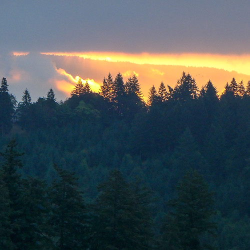 morning oregon sunrise landscape dawn skies pinetrees