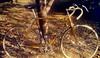 """Kessels """"Eddy Merckx"""" 1972"""