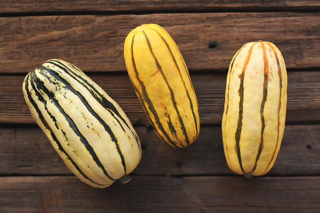 Chile Spiced Roasted Delicata Squash Rings