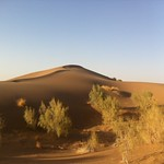 Iran Desert Trip
