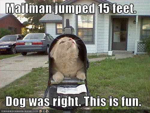 Mailman Jumped 15 Feet... Dog Was Right... This Is Fun...
