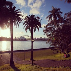 Sunset on Sydney Bay #Australia #Sky #SeeAustralia #Sydney #OperaHouse #Palms #Bridge