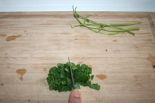 47 - Koriander zerkleinern / Mince coriander