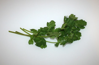17 - Zutat frischer Koriander / Ingredient fresh coriander