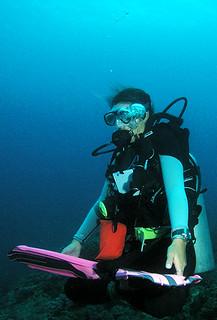"<img src=""padi-peak-performance-buoyancy-tioman-island-malaysia.jpg"" alt=""PADI Peak Performance Buoyancy, Tioman Island, Malaysia"" />"