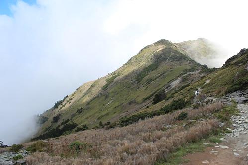 嘉明湖國家步道系統位於向陽野生動物重要棲息環境內。