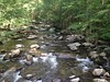 Little Pigeon River, Great Smokey Mountain National Park