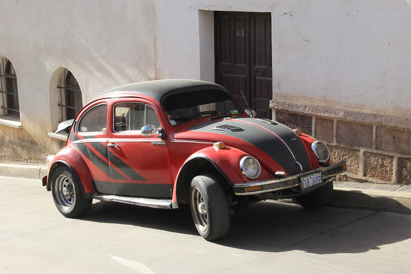 Sucre Beetle