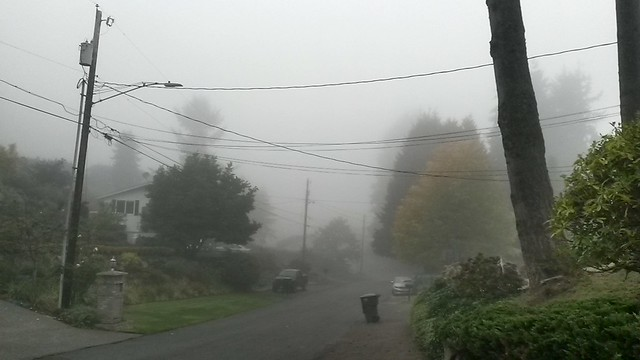 Visibility on our street