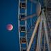Blood Moon Behind the Ferris Wheel
