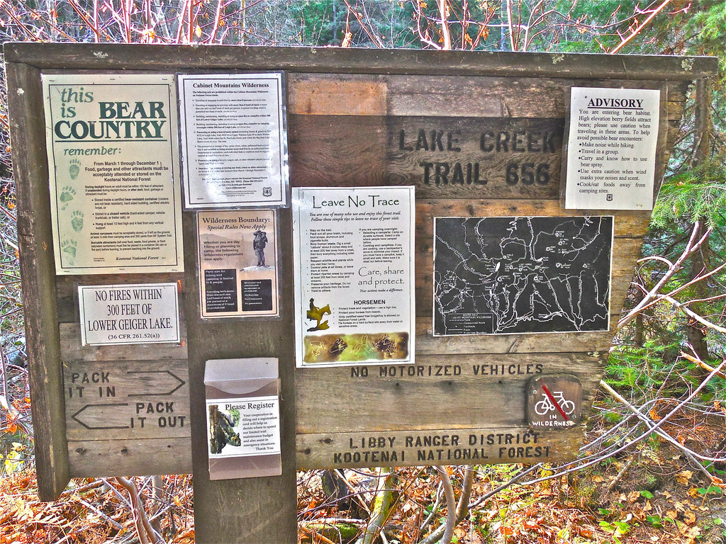 At trail head for Cabinet Wilderness trail 656