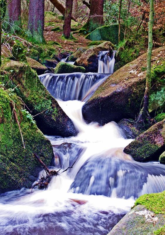 Padley Gorge #2
