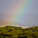 rainbow by ►mikehedge.com ♫