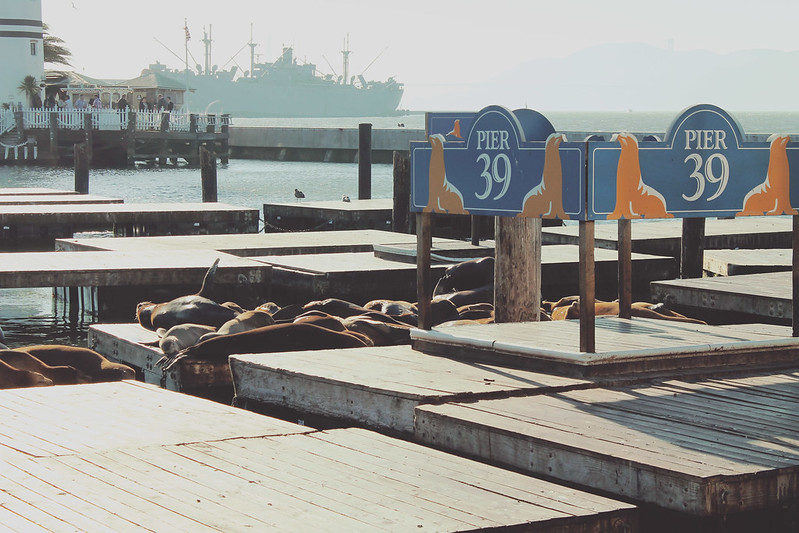 San Francisco Pier9