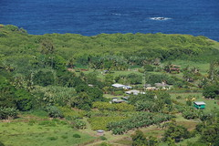 Aerial View of Small ocean side farm community on…