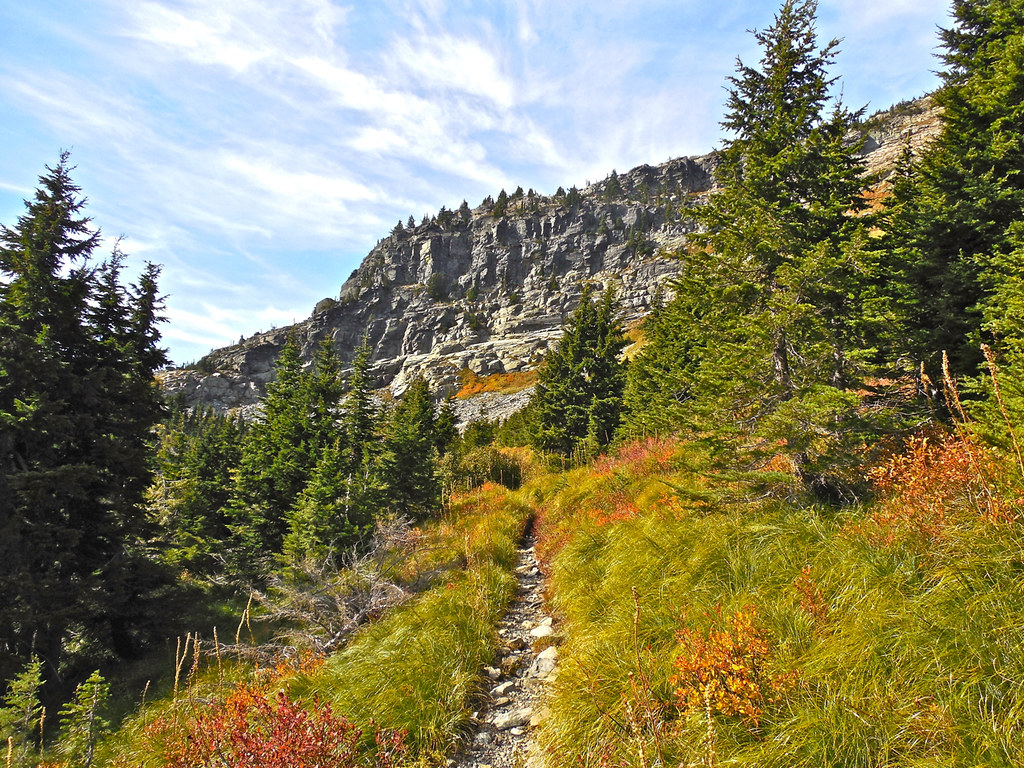 Trail 656 between Upper Geiger Lake and Lost Buck Pass