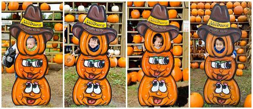 Milburn Orchards 2011-2014