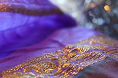 silk sari with gold embroidery
