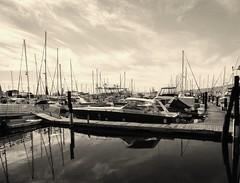 Yacht Haven Marina - Wilmington Shores