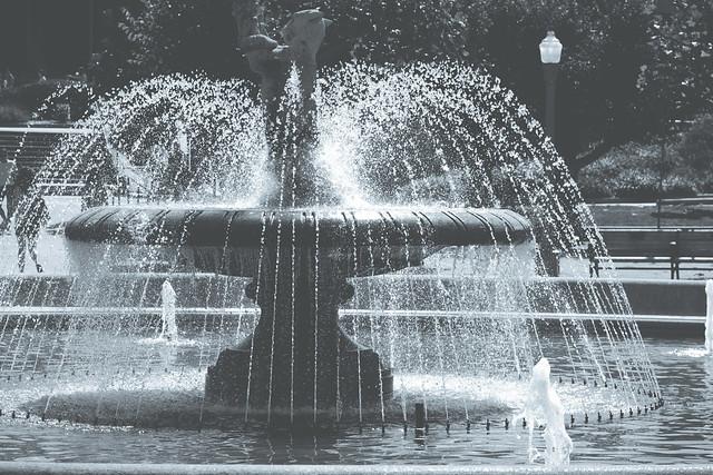 Fountain, Music Concourse, Golden Gate Park, San Francisco