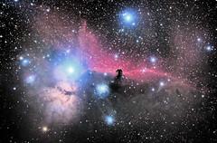 NGC2040 (Flame nebula) and Horsehead