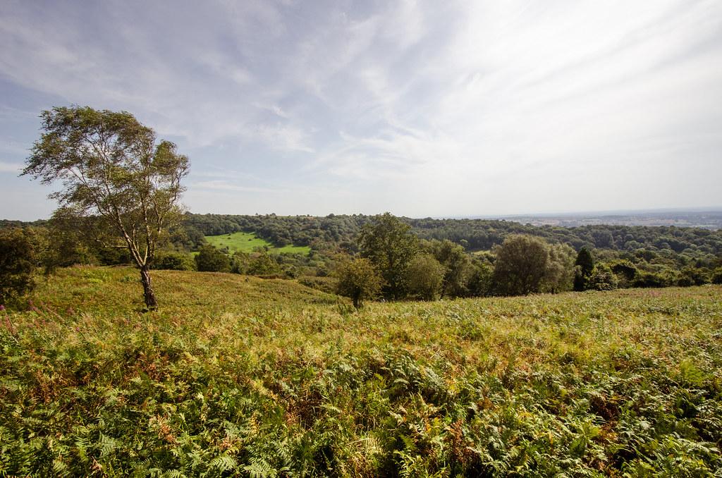Clent Hills-7