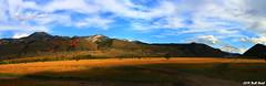 Swan Valley, Idaho - A Panorama - 2