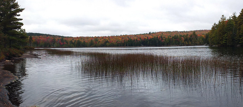 Ducktail Pond pano 10-1-14