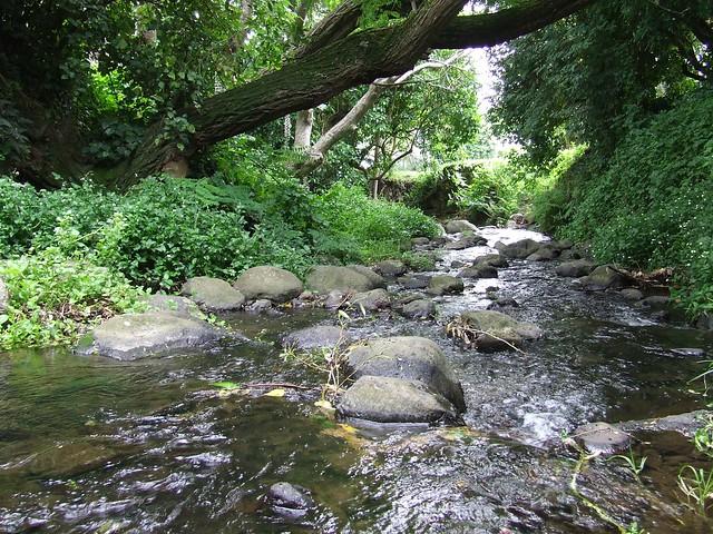 The Akaroa River