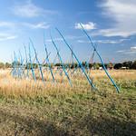 Nancy Lovendahl, Spiral Dance, Standing dead Aspen Trees, 2013 - Photograph by Wes Magyar