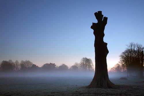 park mist tree silhouette statue wales sunrise canon liberty eos dawn cardiff 5d statueofliberty llandaff pontcanna canoneos5d ef24105f4l llandafffields stevegarrington