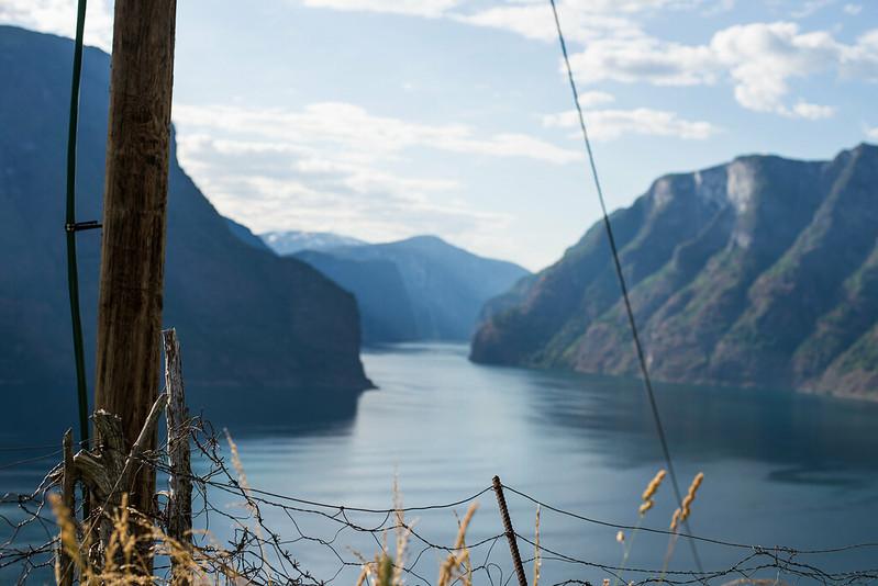 Norge roadtrip-230