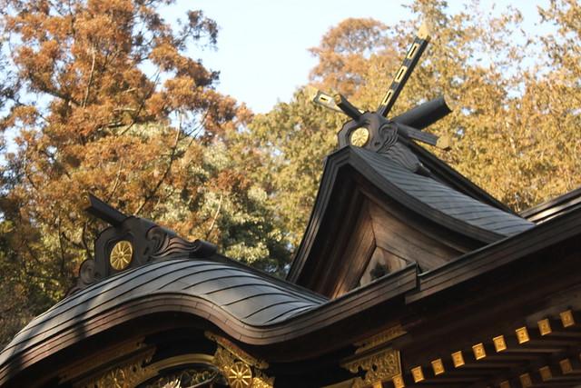 2014-02-01_00307_宝登山