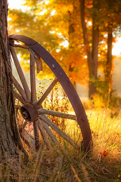 Paul Jolicoeur - Many Autumns