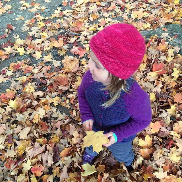 She found a good maple leaf :)