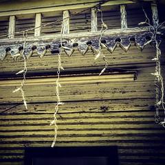 Forgotten lights #abandoned #abandonedlove #farmhouse #ruralexploring #ruraltexasusa #ruralexploration #ruralamerica #ruraltexas #rural #Texas #TexasToday #TXBKRDS #Rockwall