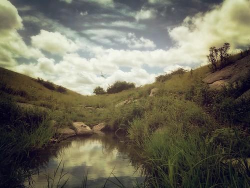 kansas flinthills