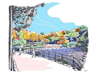 紅葉の戸越公園 The autumn colors in Togoshi Park