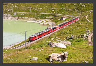 Schweiz pur, 08. Aug 2010