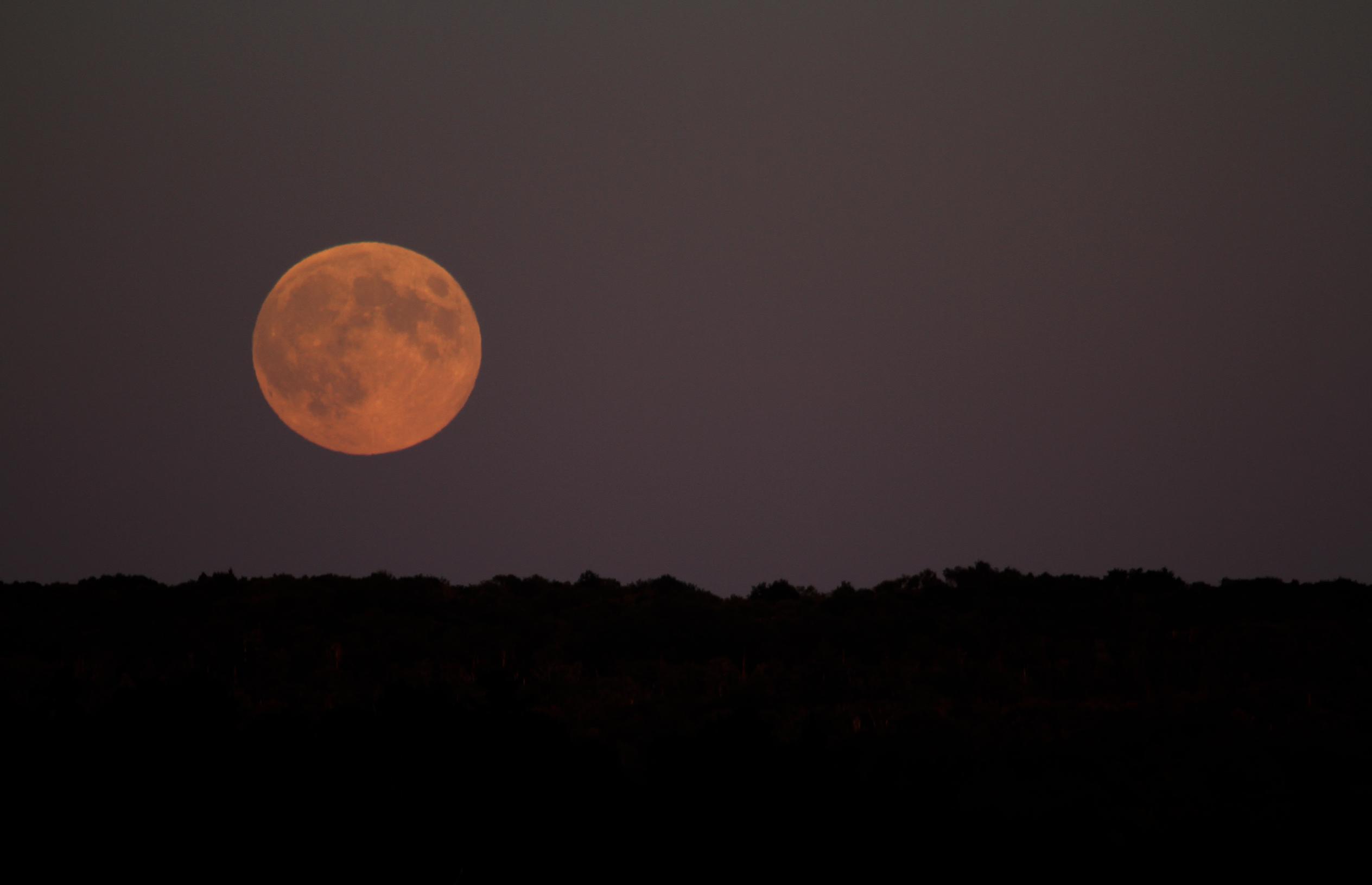 moon rising3