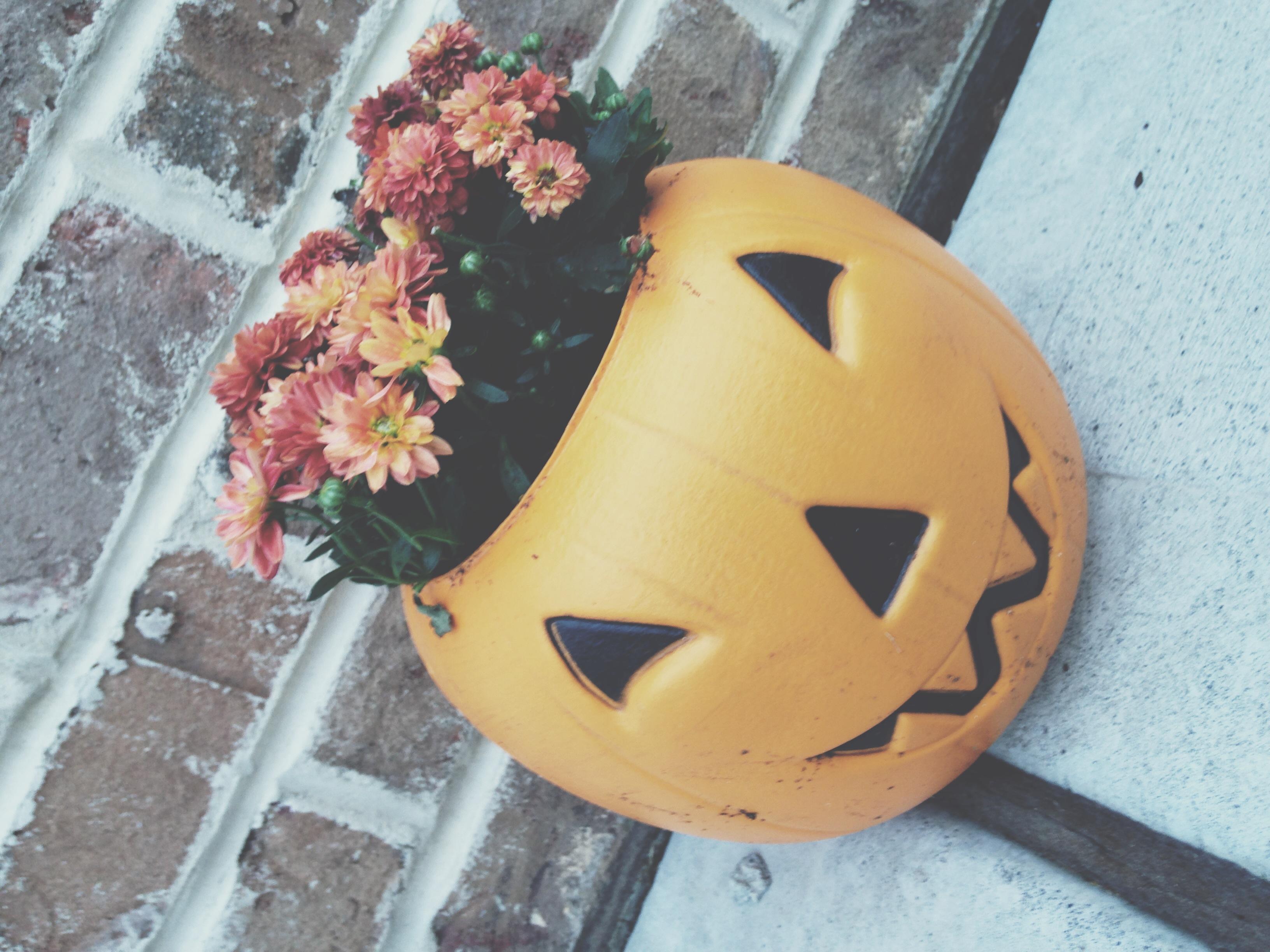 fall2014_3