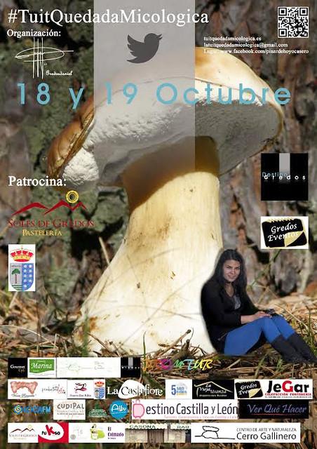 Tuit Quedada Hoyocasero (Ávila)