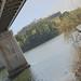 Minho River - Valença by Haast's eagle