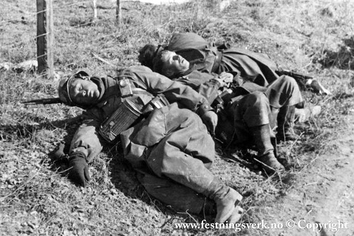 Det tyske felttoget  (2279)
