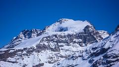 Szczyt Gran Paradiso 4061m, lodowiec Ghiacciaio del Gran Paradiso z przełeczy Coli de Punta Fuora.